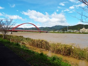 台風通過直後の都田川