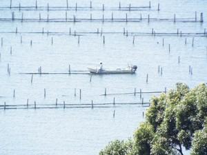 浜名湖で船釣り